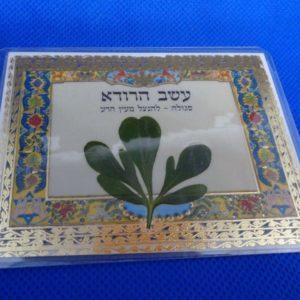 Оберег еврейских мудрецов от сглаза и порчи